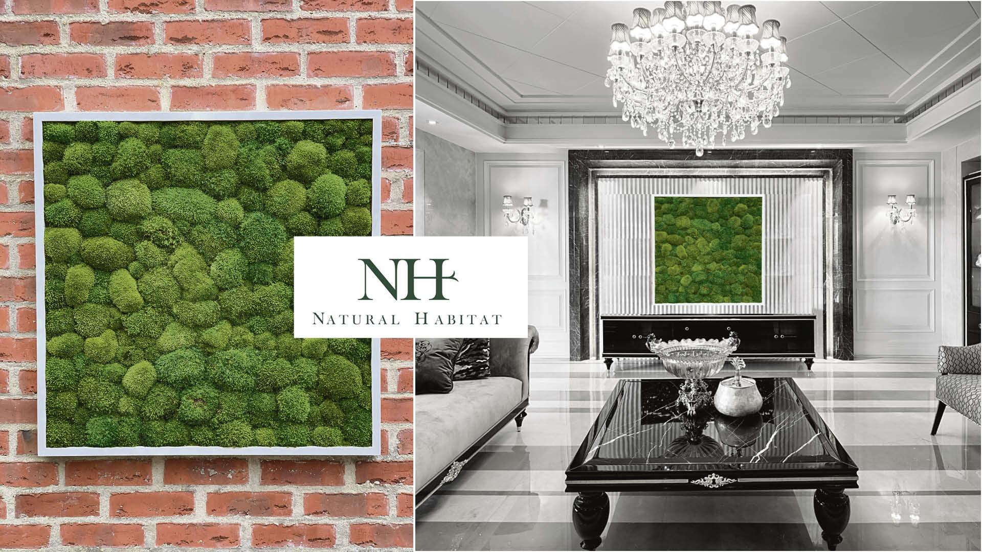 Win a sustainable 80x80cm bun moss frame Worth £429!